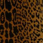 Velluto Tagliato Leopardo|Tessiture Bevilacqua